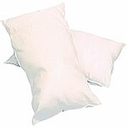PILLOW PLASTIC WIPECLEAN (BWCLEAN)  EACH