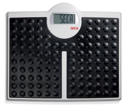 SCALES SECA FLAT ELECTRONIC 200KG (SECA-813) EA - Click for more info